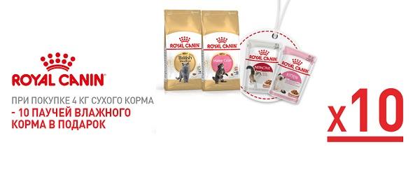 При покупке 4 кг или 2 уп. по 2 кг Royal Canin для кошек – 10 паучей в подарок!