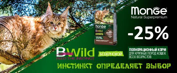 -25% на Monge Bwild Grain Free для крупных кошек