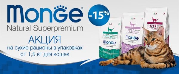 Распродажа кормов Monge для кошек!
