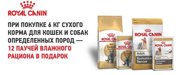 При покупке 6 кг сухого корма для кошек и собак определенных пород Royal Canin - 12 паучей в подарок