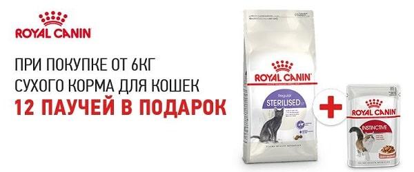 Паучи в подарок при покупке 6 кг корма Royal Canin для кошек!