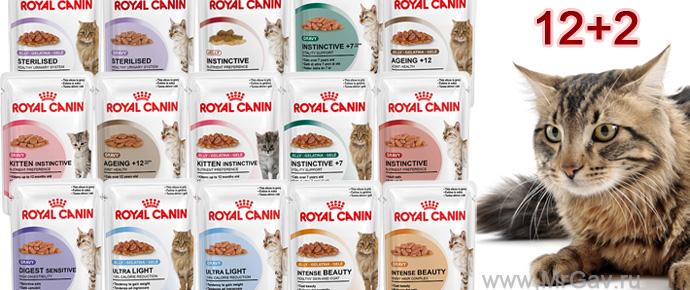 12+2 паучей Royal Canin