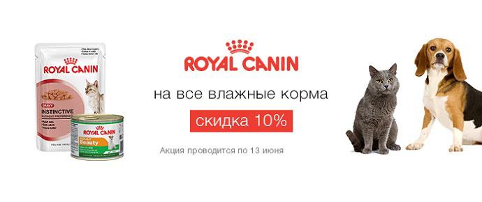 Скидка 10% на влажные корма Royal Canin!