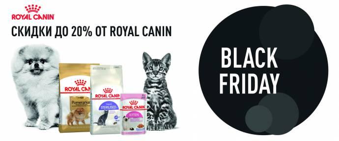 Черная пятница вместе с Royal Canin!