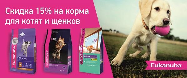 Скидка 15% на корма Eukanuba для щенков и котят