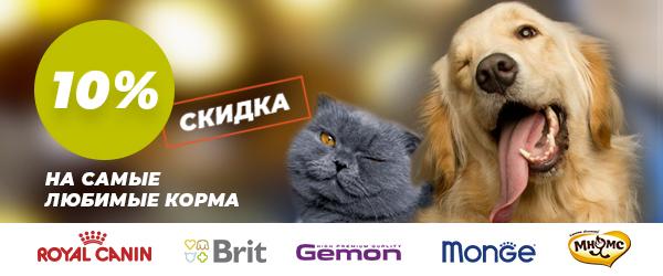 Черная пятница: -10% на Royal Canin, Gemon, Brit, Monge, Мнямс
