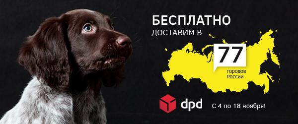 Бесплатная доставка в 77 городов России!