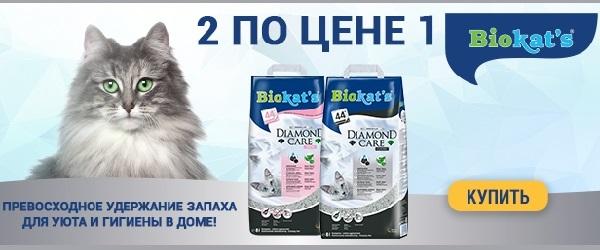 Акция 1+1 на наполнители BIOKAT'S!