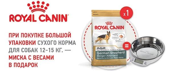 При покупке большой упаковки корма для собак Royal Canin - миска в подарок!