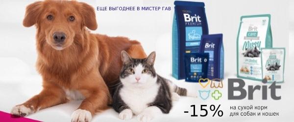 Скидка до конца июня на корма Brit Care 15%!