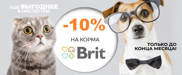 Скидка 10% на Brit Premium