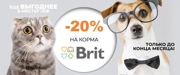Скидка 20% на Brit Premium!