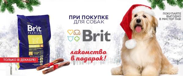 При покупке Brit для собак 15 или 18 кг - лакомство в подарок!