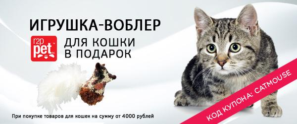 Игрушка-мышка для кошки в подарок!