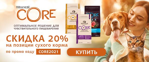 Промокод на скидку 20% на Wellness Core!