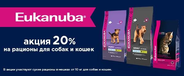 Распродажа премиум корма Eukanuba!