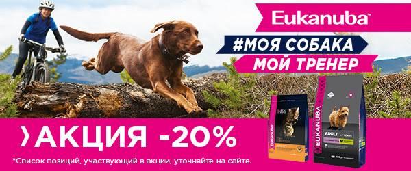 -20% на корма Eukanuba c курицей!
