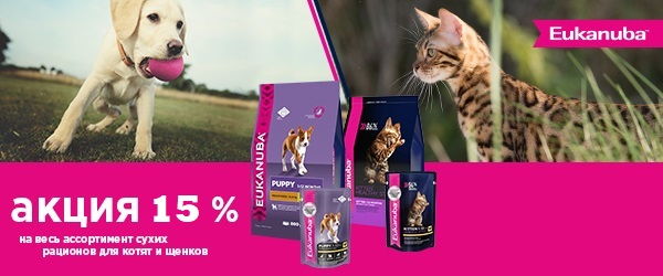 -15% на корма Eukanuba для щенков и котят