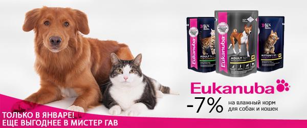 Скидка 7% на влажный корм Eukanuba для собак и кошек!