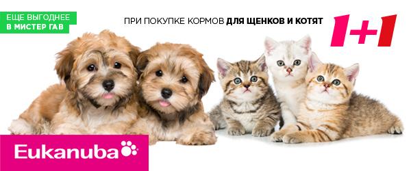 1=2 при покупке корма для щенков и котят Eukanuba
