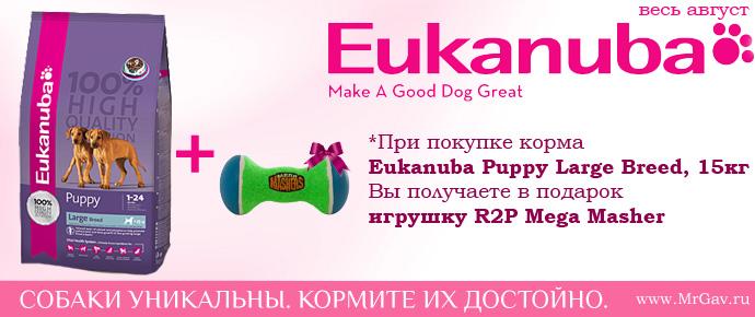 Eukanuba + игрушка R2P