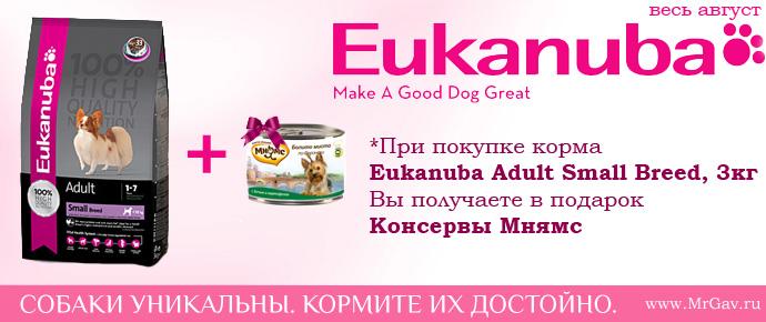 Eukanuba + Мнямс
