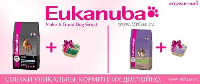 Eukanuba: консерва в подарок