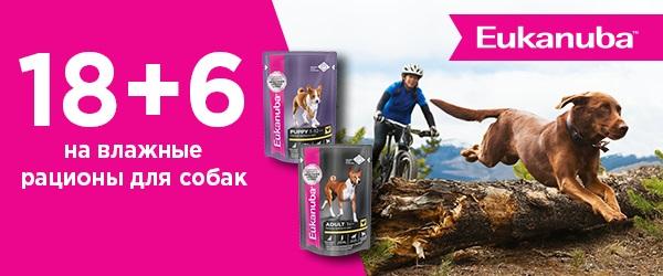 18+6 на влажные рационы Eukanuba для собак