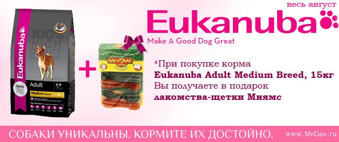 Eukanuba для средних пород + Мнямс