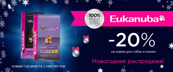 Новогодняя распродажа кормов Eukanuba!