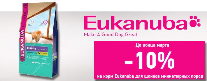 Скидка 10% на корм Eukanuba Puppy Toy Dog