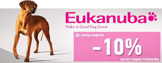Распродажа кормов Eukanuba