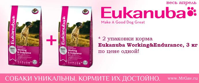 Eukanuba Working&Endurance - 2 по цене 1