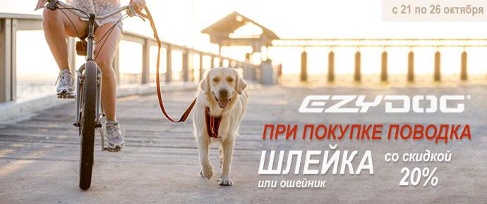 Шлейка и ошейник EzyDog со скидкой 20% при покупке поводка!