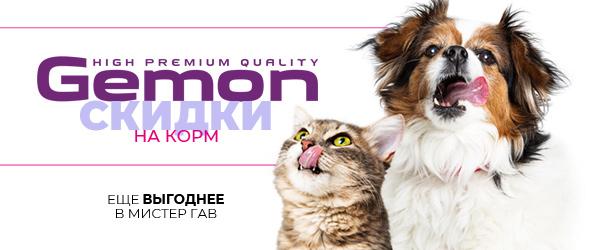 Распродажа кормов для кошек и собак Gemon!