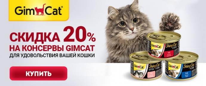Скидка 20% на консервы GimCat!
