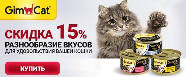 Скидка 15% на консервы GimCat!