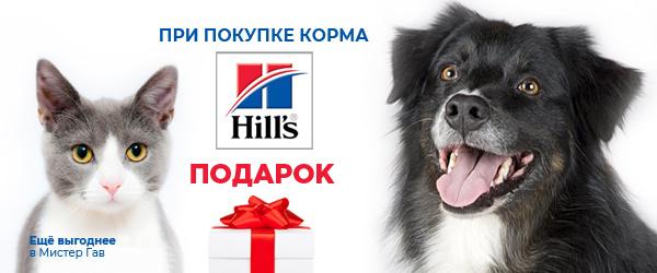 Лакомство в подарок при покупке корма Hill's