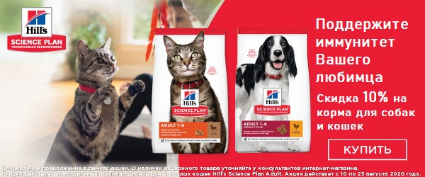 -10% на корма для собак и кошек Hill's
