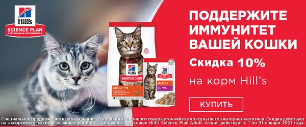 -10% на рационы для собак и кошек Hill's