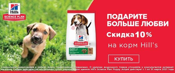 Скидка 10% на корма для собак и кошек Hill's!
