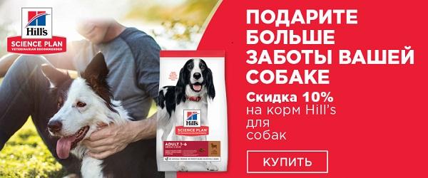 Скидка 10% на корма Hill's для собак!