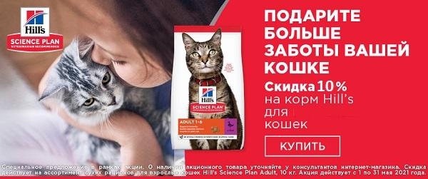 Скидка 10% на корма Hill's для кошек!