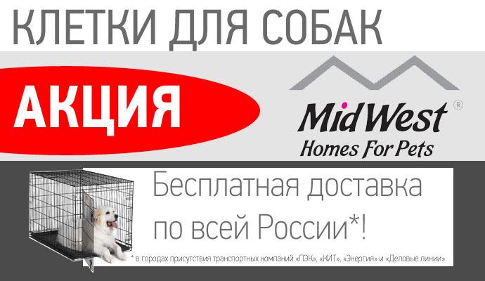 Бесплатная доставка клеток по всей России!