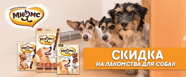 -15% на лакомства Мнямс для собак!