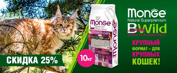 Скидка 25% на Monge Bwild Grain Free для крупных кошек