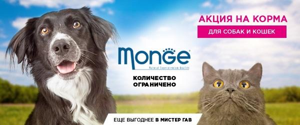Скидка 20% на корм Monge на большие мешки для собак и кошек
