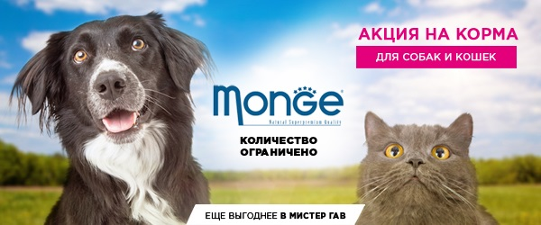 Скидка 10% на консервы Monge!