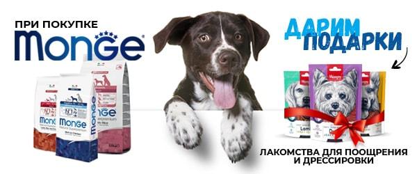 При покупке корма Monge для собак - лакомство в подарок!