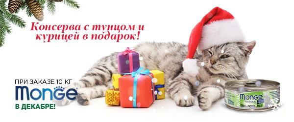 При заказе Monge 10 кг для кошек  – консерва в подарок!